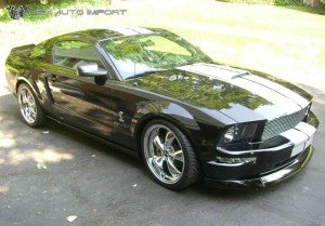 Ford Mustang Shelby Clone 02